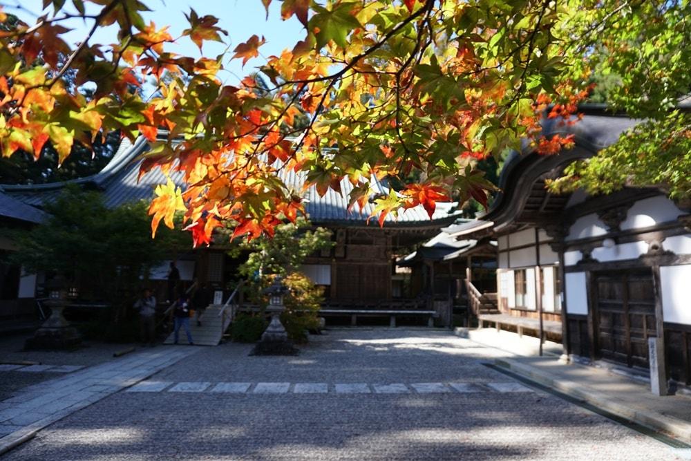 【比叡山もみじ祭り】2019年秋の延暦寺に紅葉を見に行ってきました